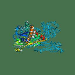 Molmil generated image of 2dap