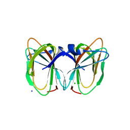 Molmil generated image of 2dct