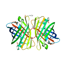 Molmil generated image of 2dd9