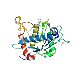Molmil generated image of 2ddf