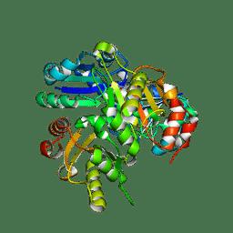 Molmil generated image of 2dek