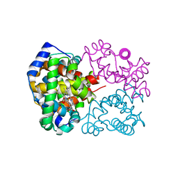 Molmil generated image of 2dn3