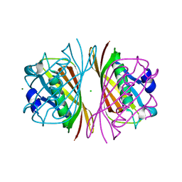 Molmil generated image of 2dsl