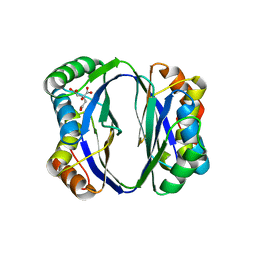 Molmil generated image of 2dtj