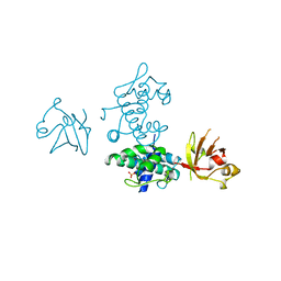 Molmil generated image of 2dtr