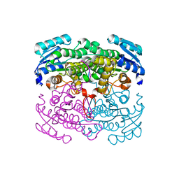 Molmil generated image of 2dtx