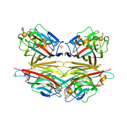 Molmil generated image of 2dva