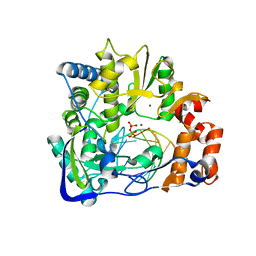 Molmil generated image of 2e9t