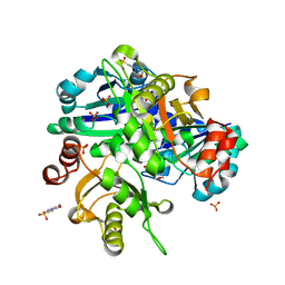 Molmil generated image of 2eh2