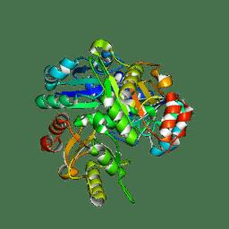 Molmil generated image of 2el2