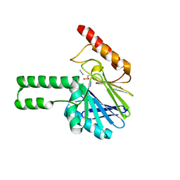 Molmil generated image of 2fhx