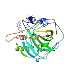 Molmil generated image of 2foy