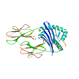 Molmil generated image of 2fse