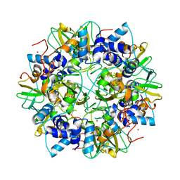 Molmil generated image of 2g9t