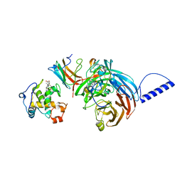 Molmil generated image of 2gc4