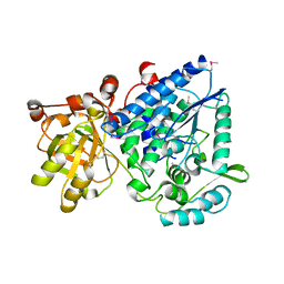 Molmil generated image of 2gp4