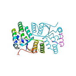Molmil generated image of 2h1c