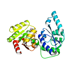 Molmil generated image of 2h1f
