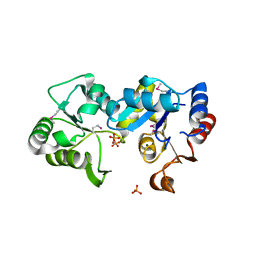 Molmil generated image of 2ho4
