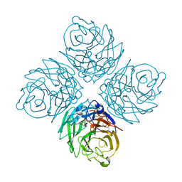 Molmil generated image of 2ht5