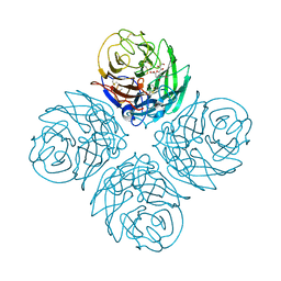 Molmil generated image of 2htw