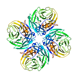 Molmil generated image of 2hu0
