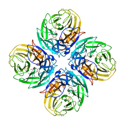 Molmil generated image of 2hu4