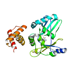 Molmil generated image of 2hvq