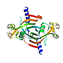 Molmil generated image of 2i02