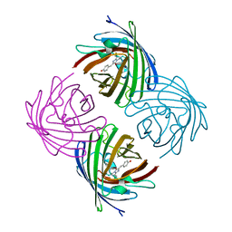 Molmil generated image of 2ie2