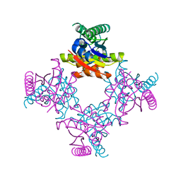 Molmil generated image of 2iel