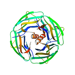 Molmil generated image of 2ii7