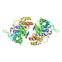 Molmil generated image of 2ipf