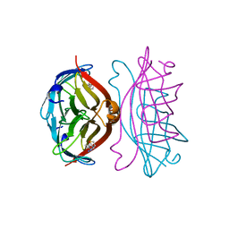 Molmil generated image of 2izl