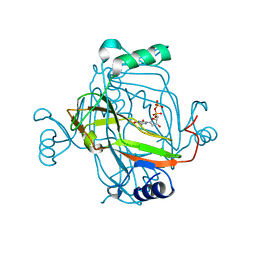 Molmil generated image of 2j4q