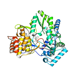 Molmil generated image of 2jc1
