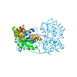 Molmil generated image of 2jfw