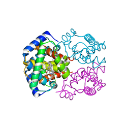Molmil generated image of 2mhb