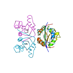 Molmil generated image of 2nck