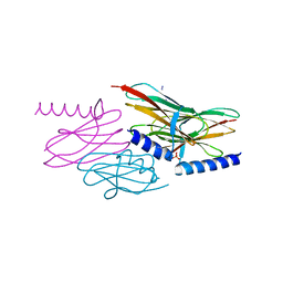 Molmil generated image of 2nnc