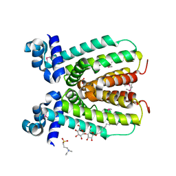 Molmil generated image of 2np5