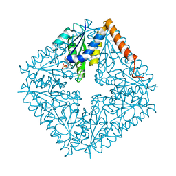Molmil generated image of 2nsh