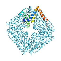 Molmil generated image of 2nsl
