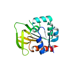 Molmil generated image of 2nv0