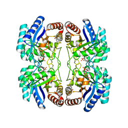 Molmil generated image of 2nx3