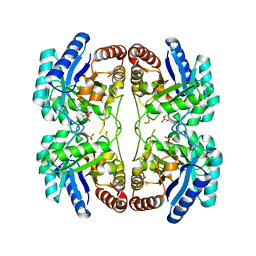 Molmil generated image of 2nxi