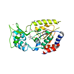 Molmil generated image of 2od9
