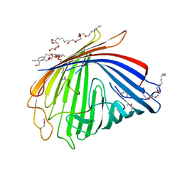 Molmil generated image of 2odj