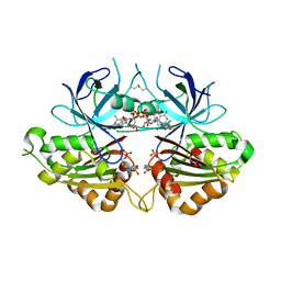 Molmil generated image of 2ok7