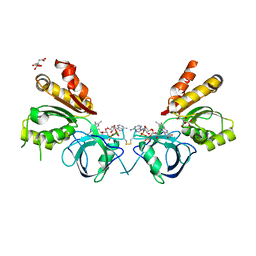 Molmil generated image of 2ok8